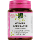 Onagre - Bourrache Bio